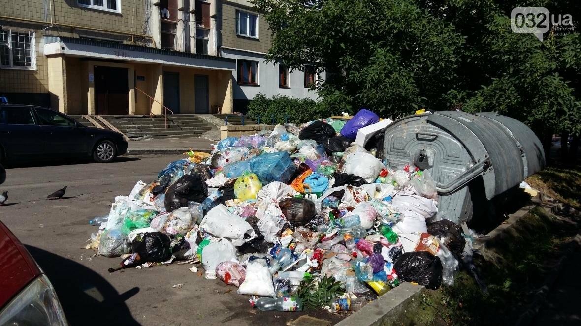 Cміттєві майданчики на вулиці Чукаріна, Сихів, Фото: Андрій Галицьки