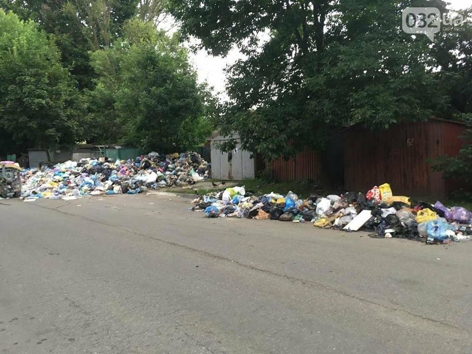 Обуренню немає меж: на вулиці Скорини у Львові сміття не вивозять вже більше місяця (ФОТО), фото-1