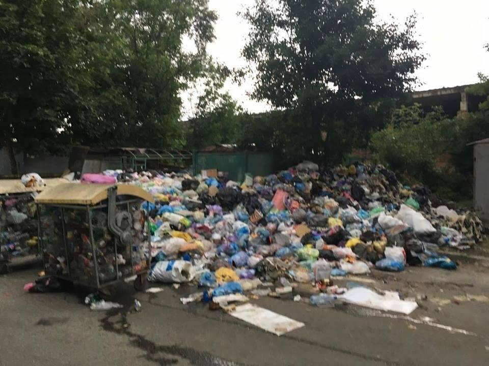 Обуренню немає меж: на вулиці Скорини у Львові сміття не вивозять вже більше місяця (ФОТО), фото-2