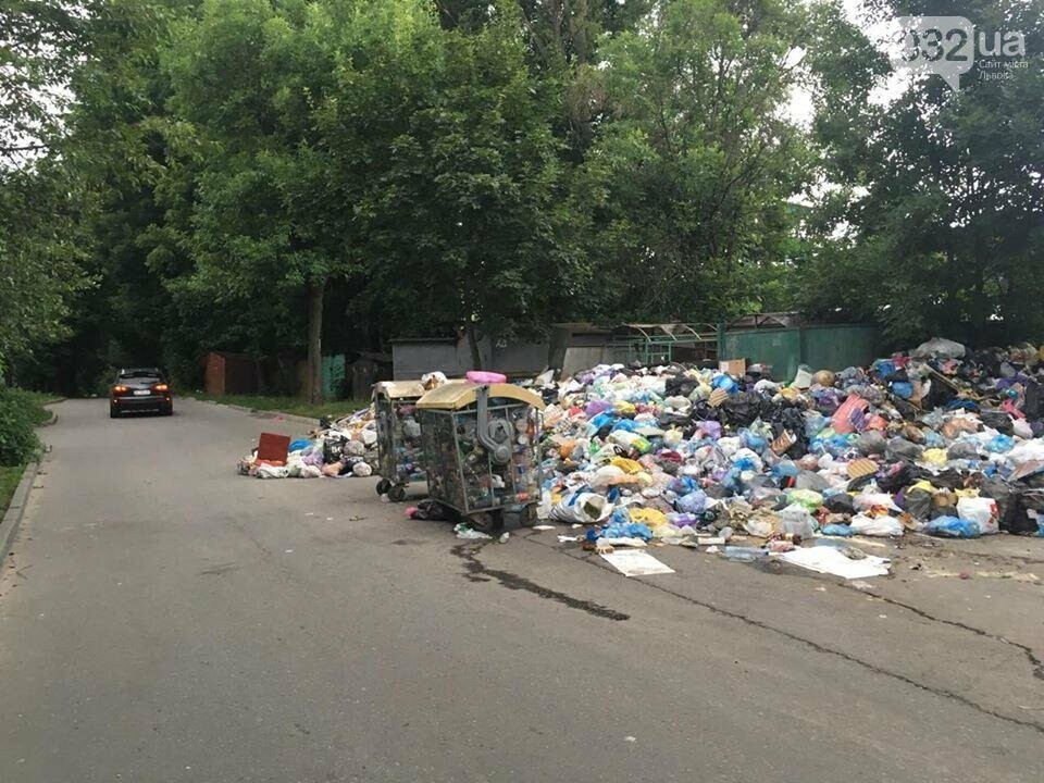 Обуренню немає меж: на вулиці Скорини у Львові сміття не вивозять вже більше місяця (ФОТО), фото-3