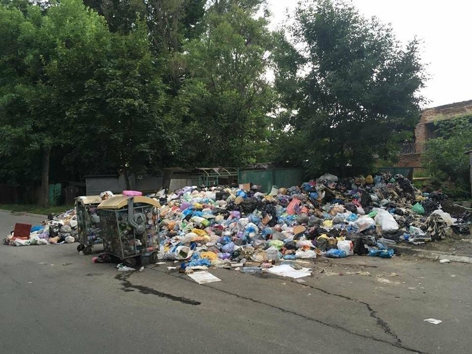 Обуренню немає меж: на вулиці Скорини у Львові сміття не вивозять вже більше місяця (ФОТО), фото-4