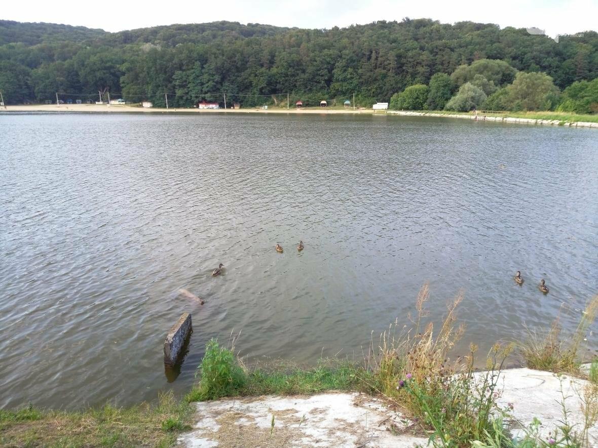 """Відпочинок на Винниківському озері: усі """"за"""" і """"проти"""", фото-16"""