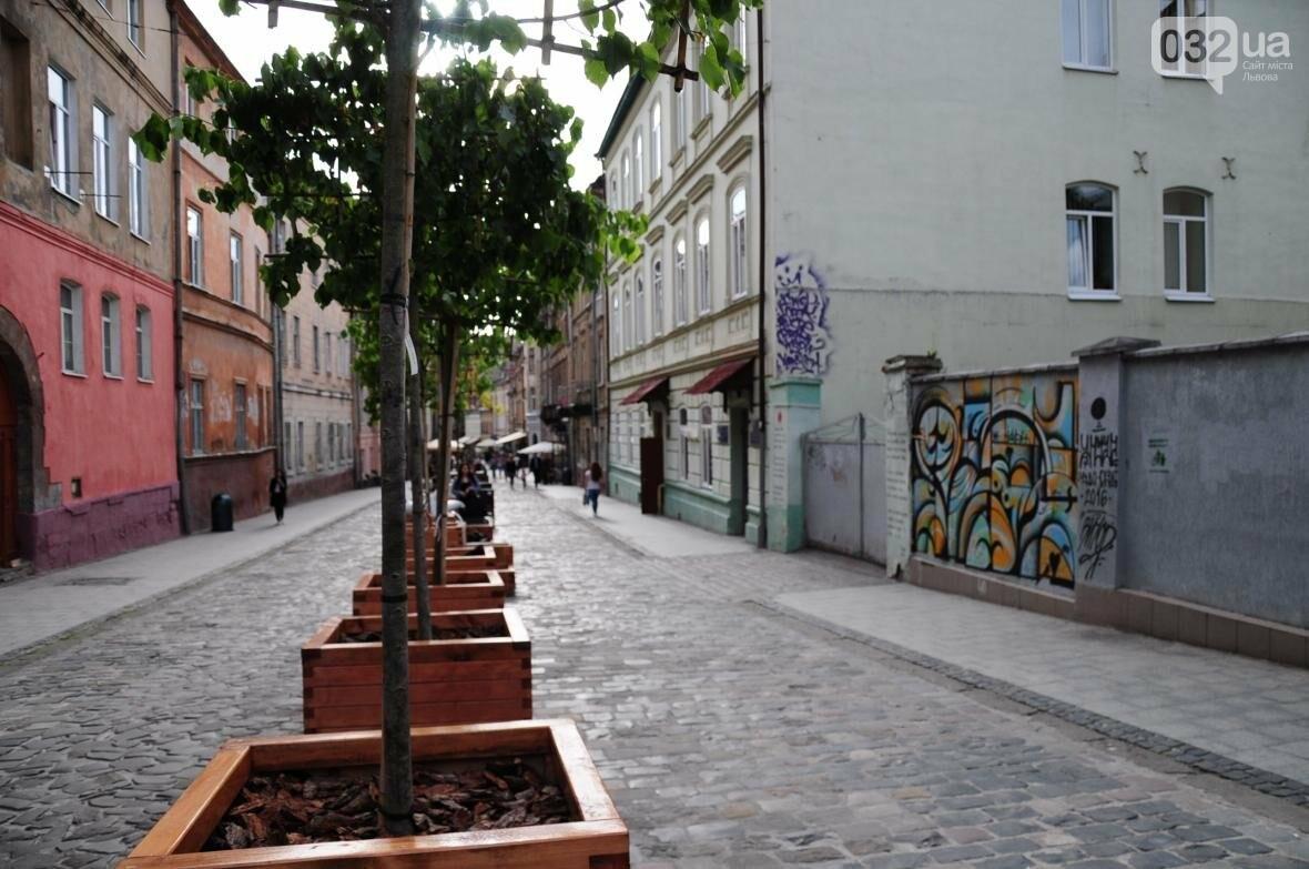 Центральну вулицю Львова озеленили (ФОТО), фото-2