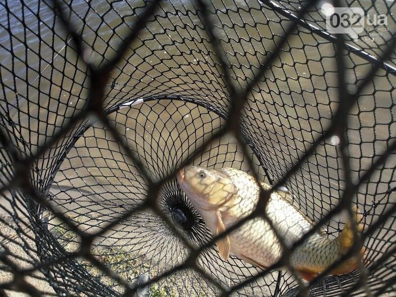 Відпочинок на озері в с. Муроване: все, що ви хотіли знати, фото-9