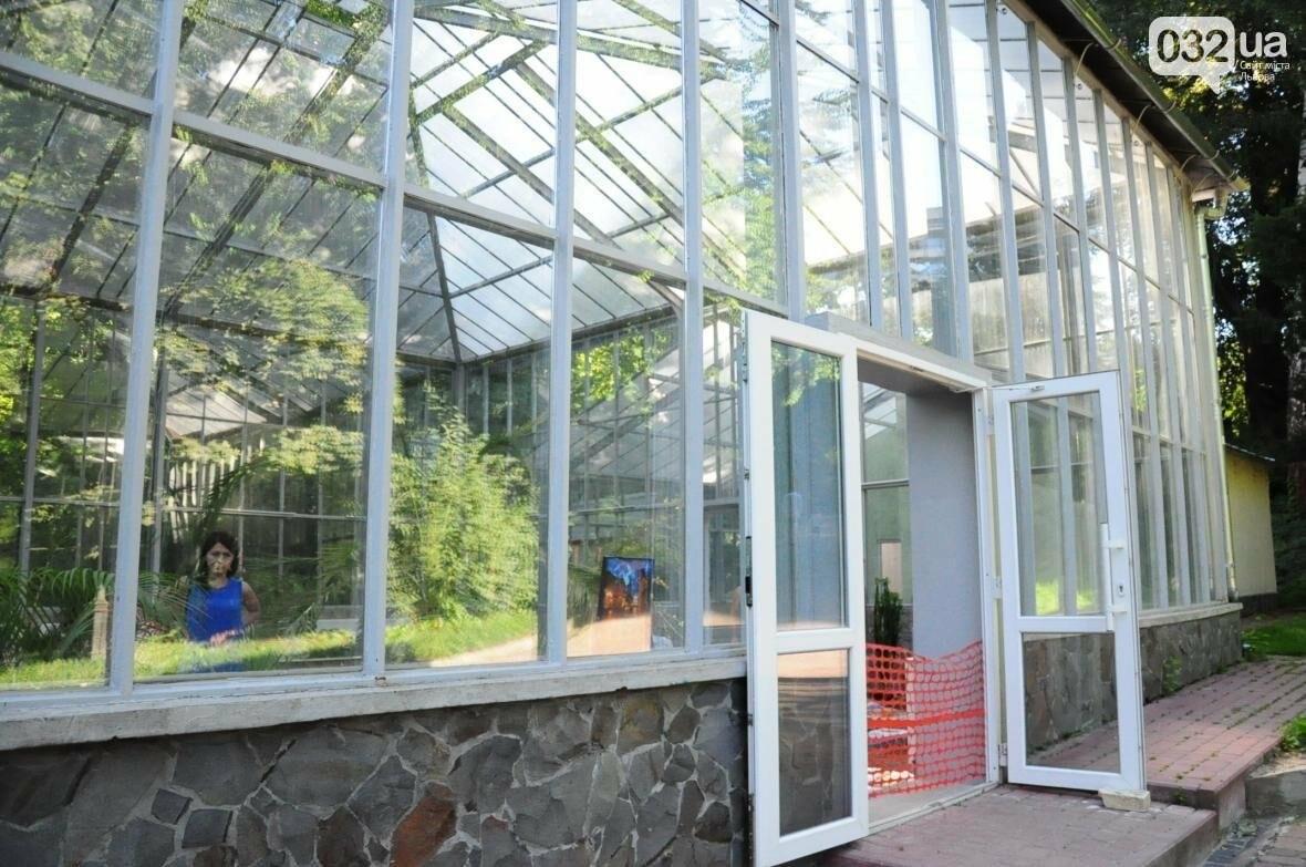 Для оранжереї у Стрийському парку придбають нові екзотичні рослини, фото-1