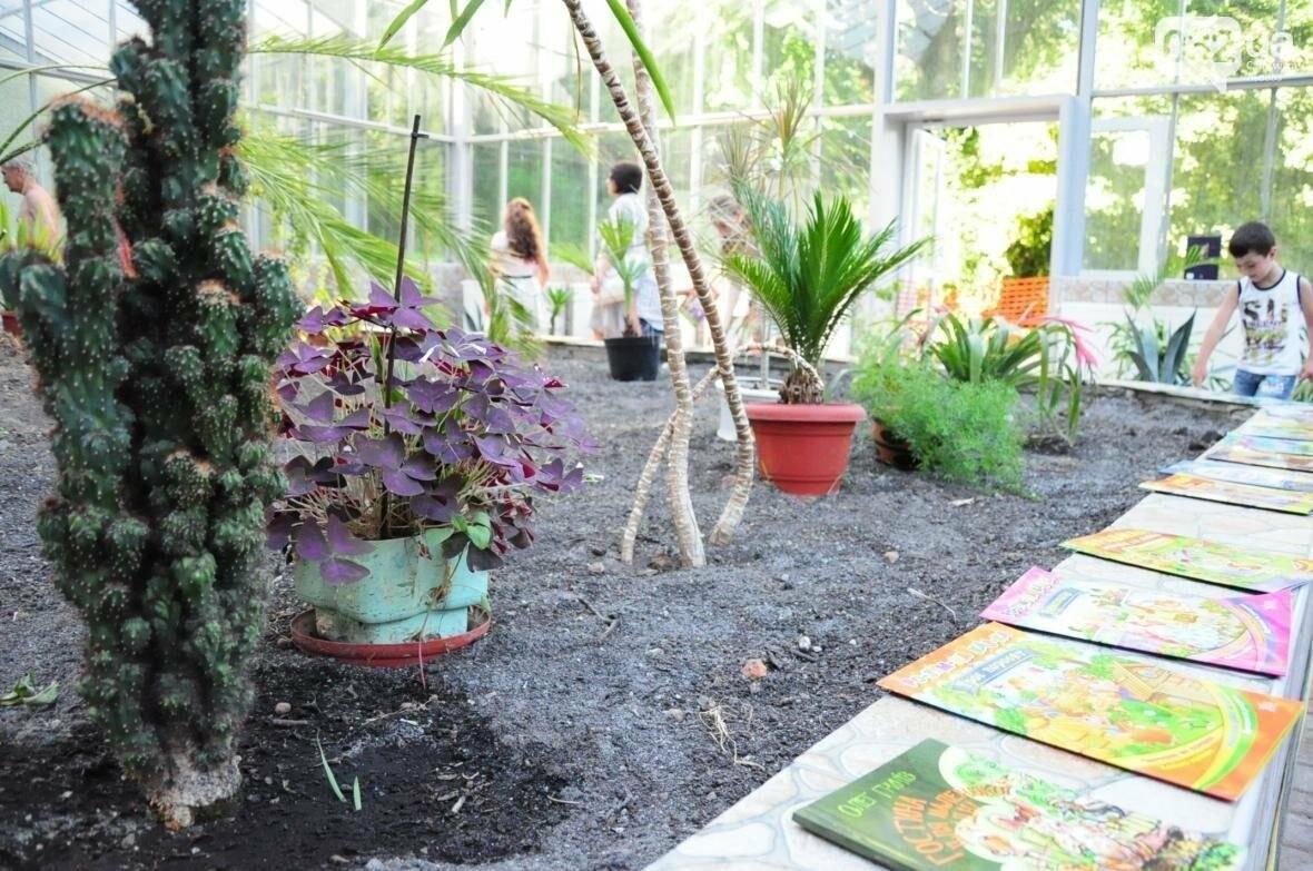 Для оранжереї у Стрийському парку придбають нові екзотичні рослини, фото-2
