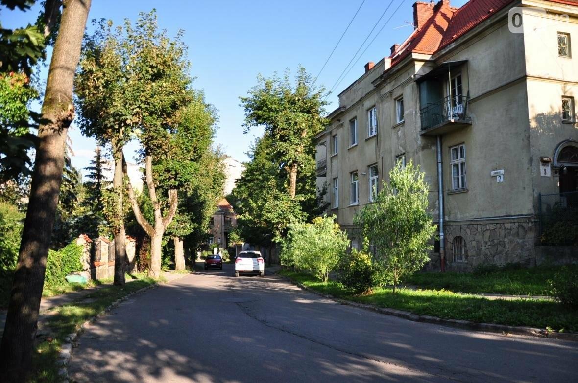 «Залізний» ліс Львова. Снопків, фото-15