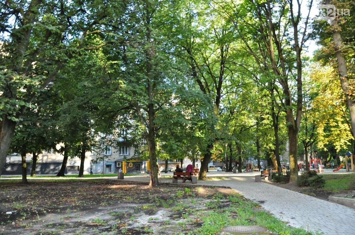 «Залізний» ліс Львова. Снопків, фото-24