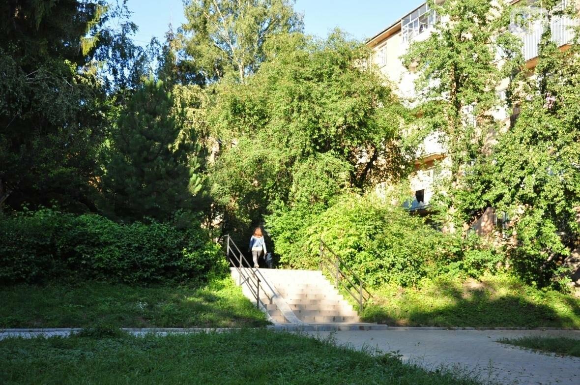 «Залізний» ліс Львова. Снопків, фото-25