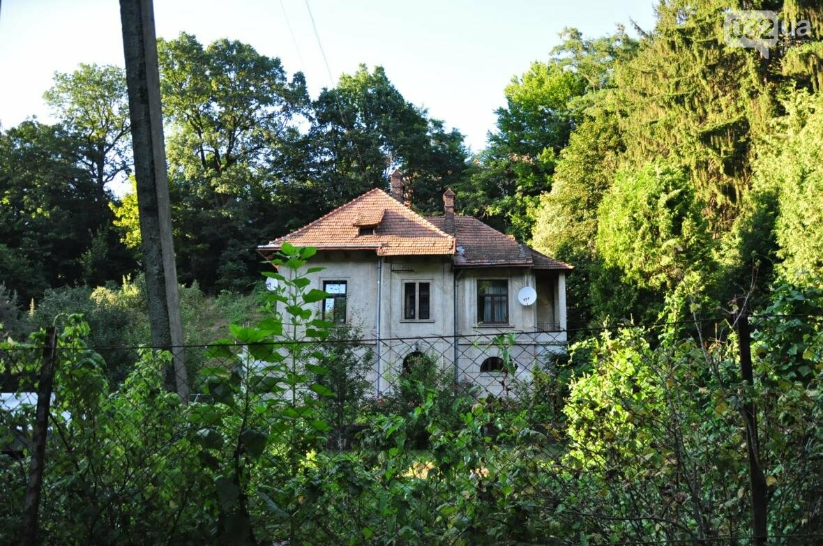 «Залізний» ліс Львова. Снопків, фото-45