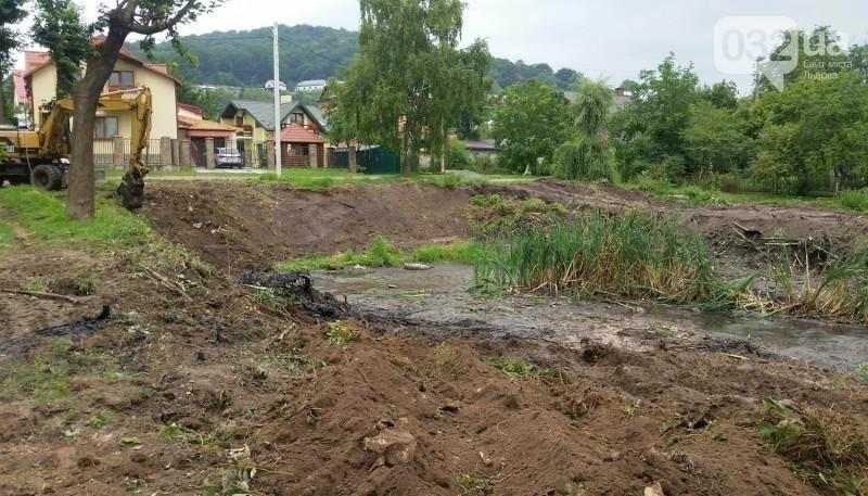 Біля Львова очищають річку, фото-2