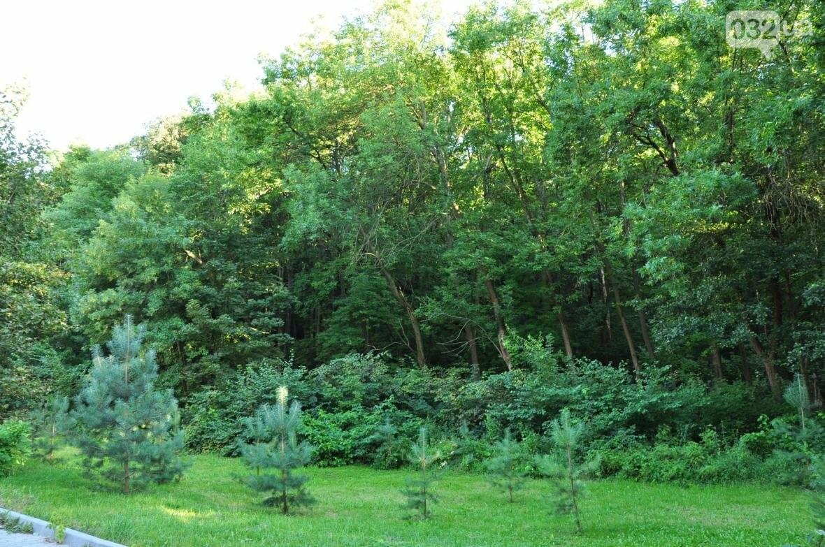 «Залізний» ліс Львова. Снопків, фото-61