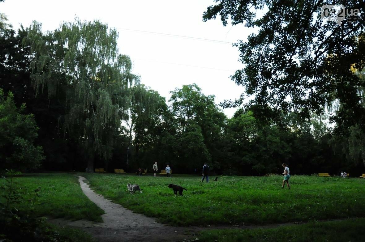 «Залізний» ліс Львова. Снопків, фото-74