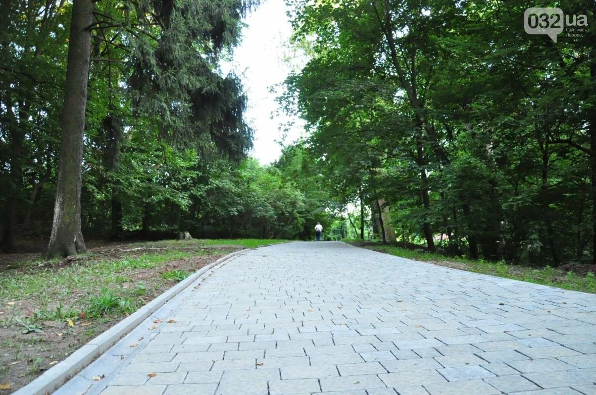 «Залізний» ліс Львова. Снопків, фото-71