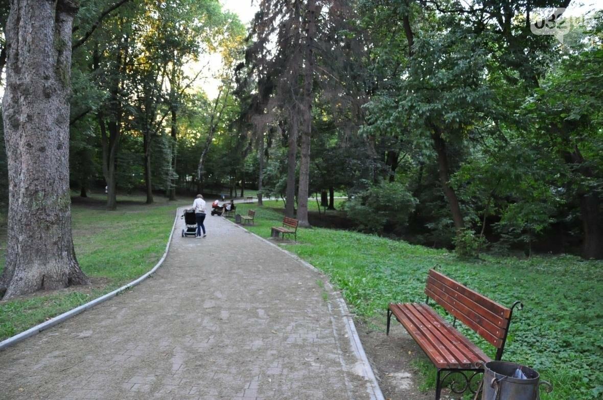 «Залізний» ліс Львова. Снопків, фото-72