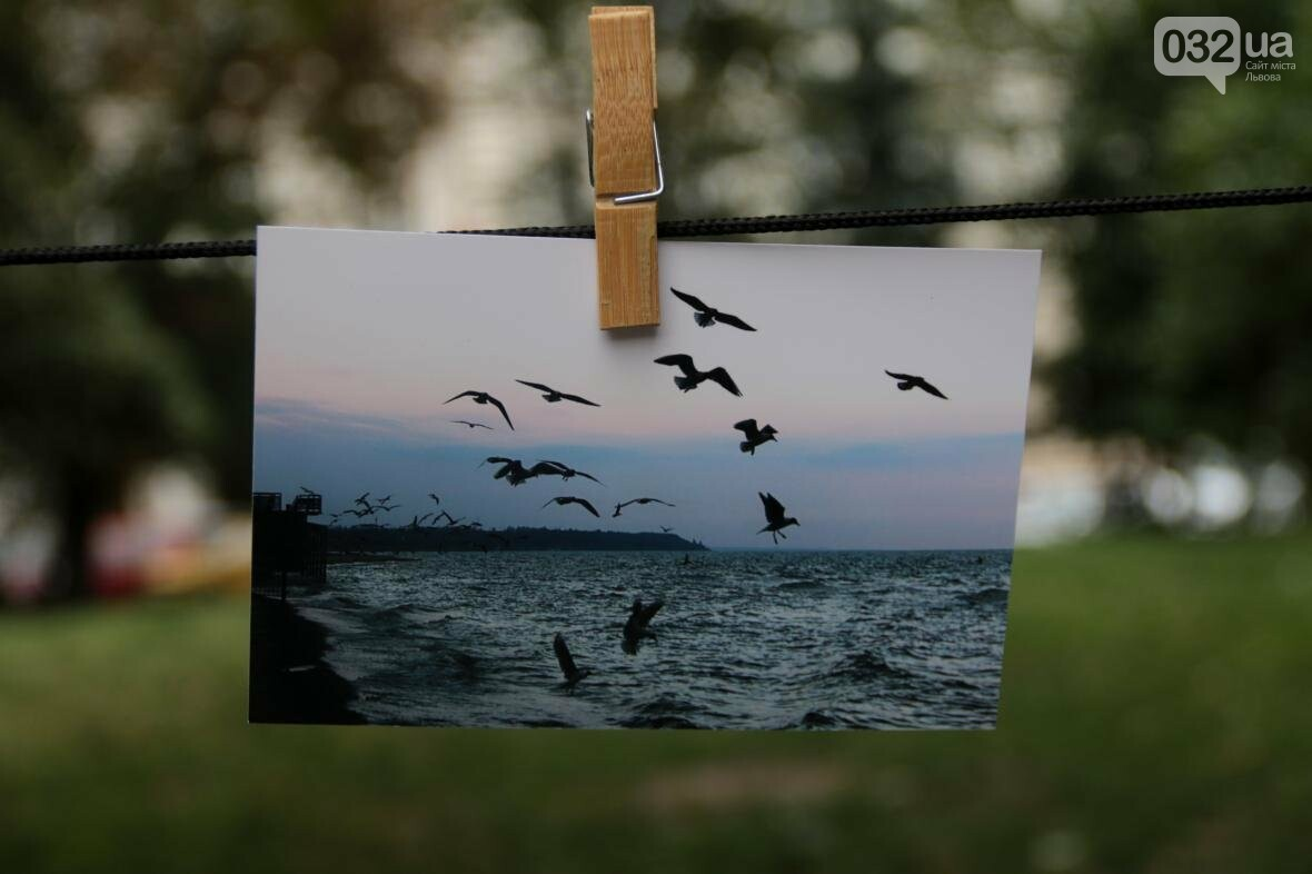 Як у Львові фотографії сушили на мотузках: фоторепортаж, фото-4