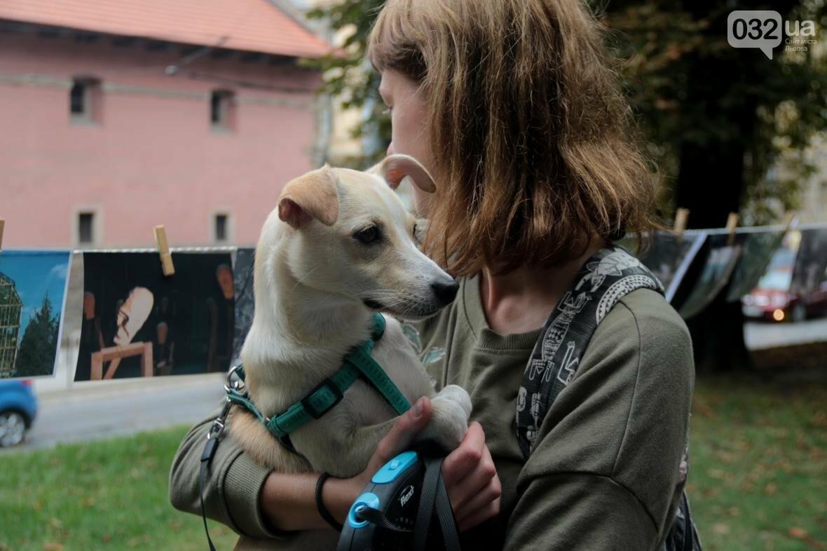 Як у Львові фотографії сушили на мотузках: фоторепортаж, фото-12