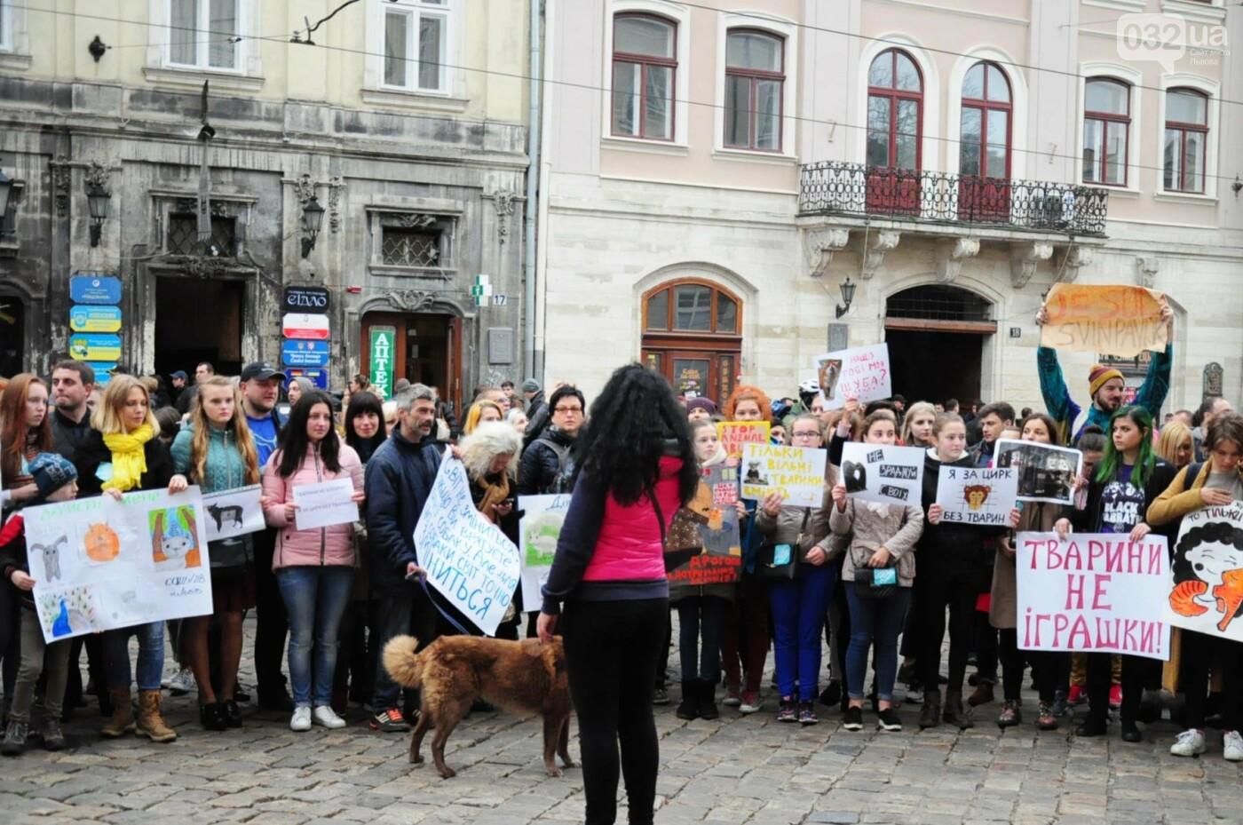 Львів'яни взяли участь у масштабному Марші на захист тварин. Фоторепортаж, фото-19