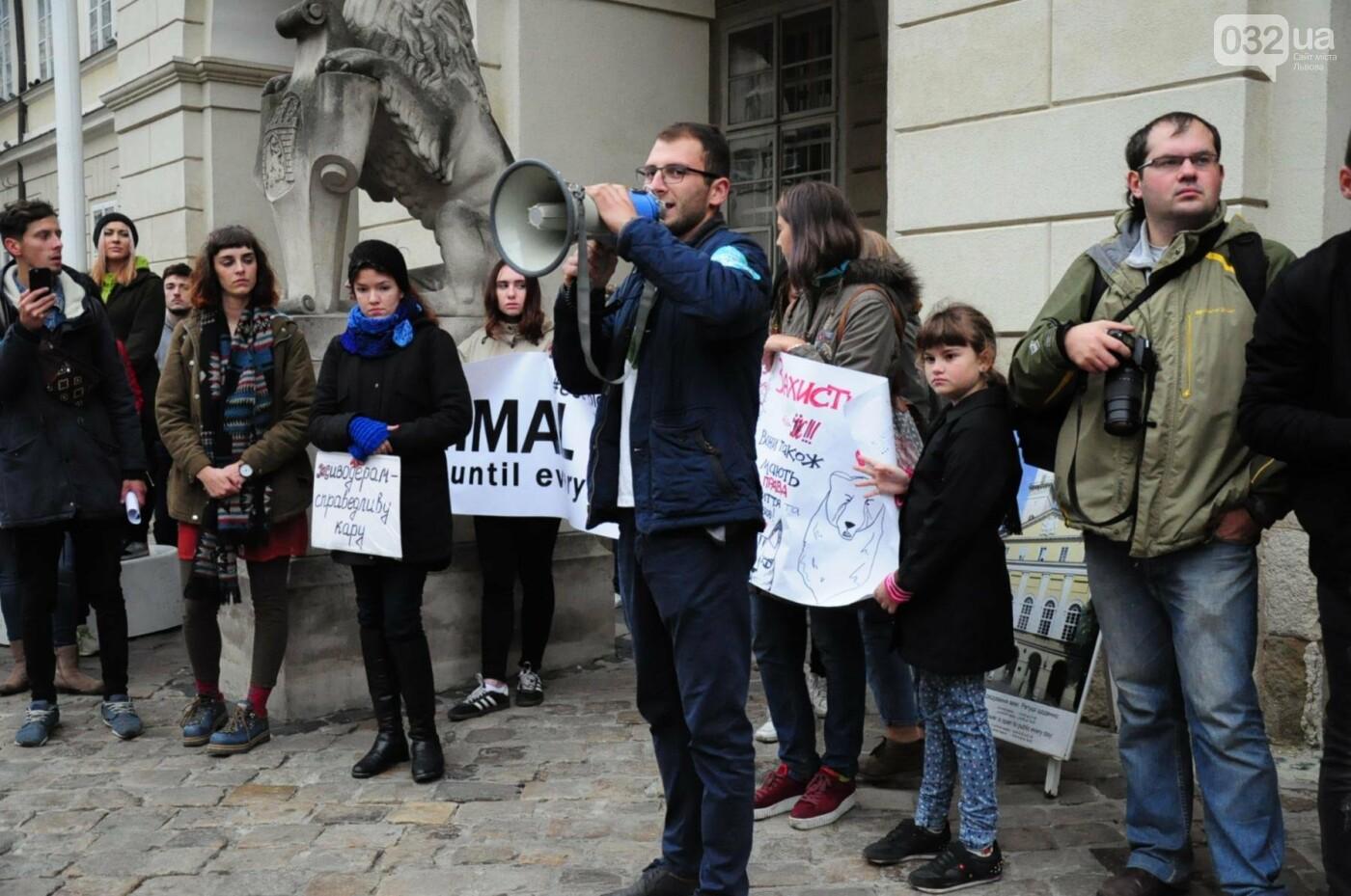 Львів'яни взяли участь у масштабному Марші на захист тварин. Фоторепортаж, фото-22