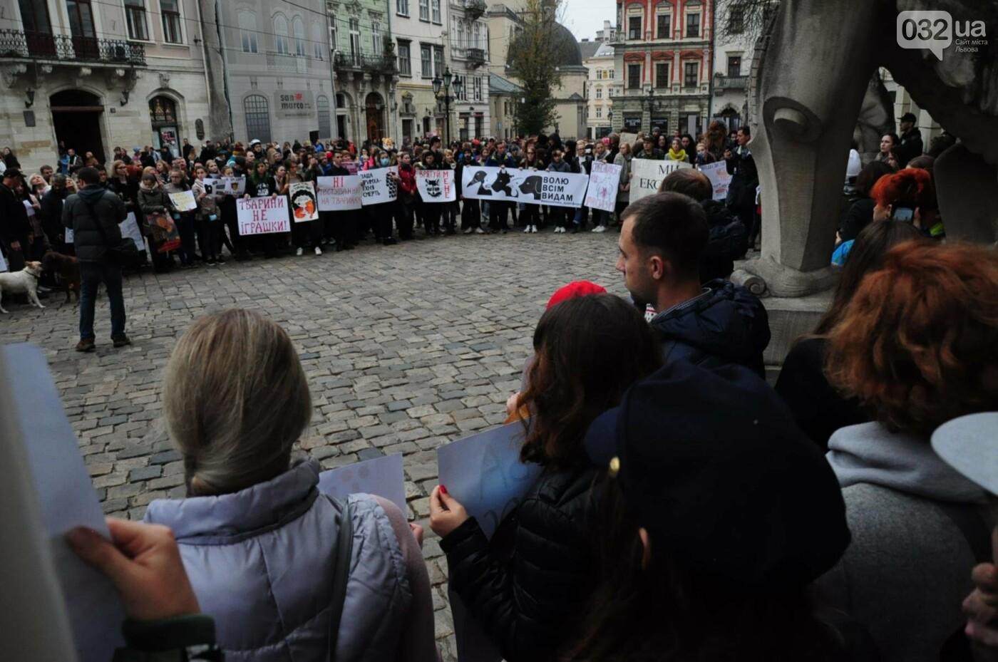 Львів'яни взяли участь у масштабному Марші на захист тварин. Фоторепортаж, фото-17
