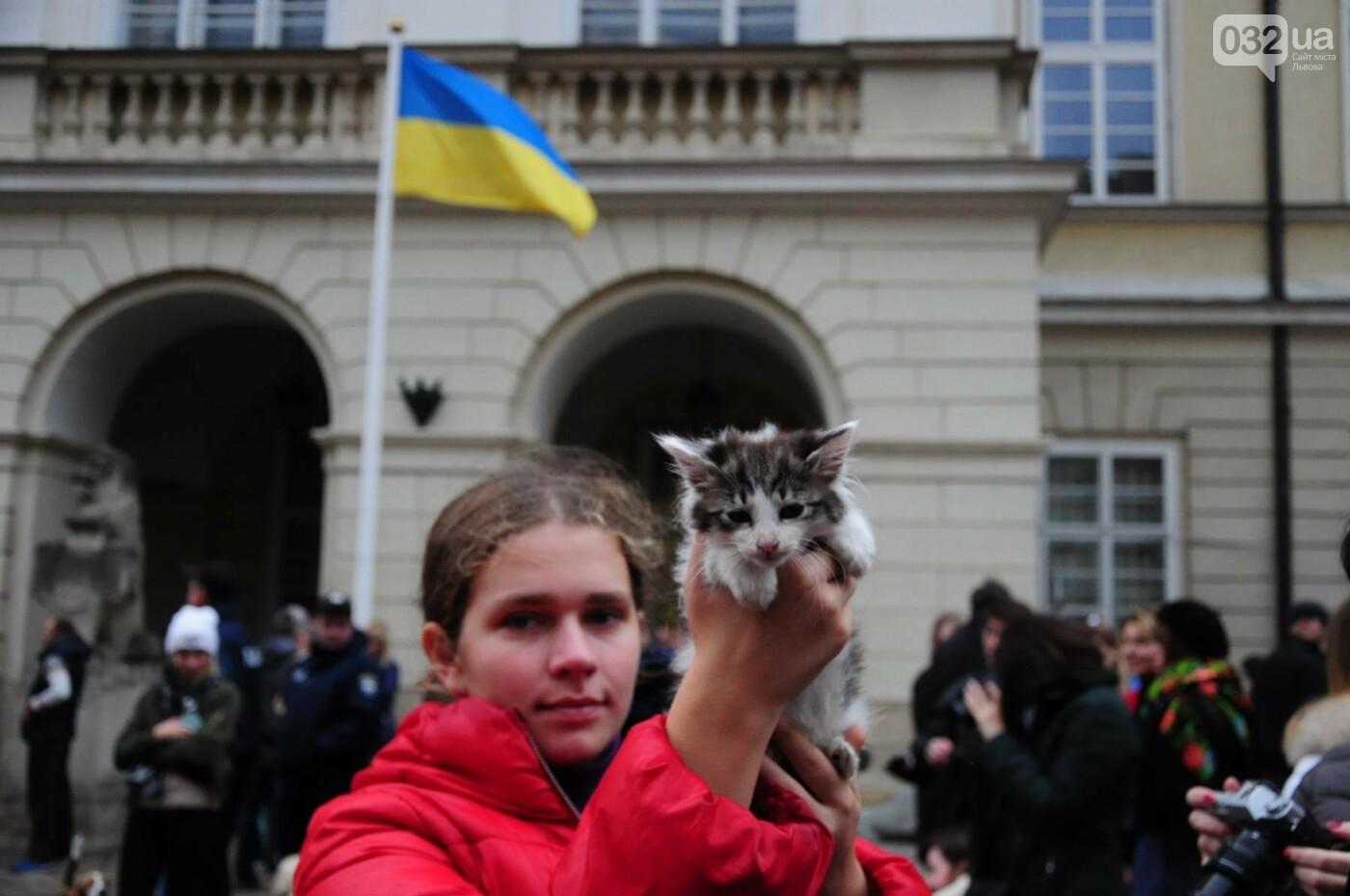 Львів'яни взяли участь у масштабному Марші на захист тварин. Фоторепортаж, фото-10