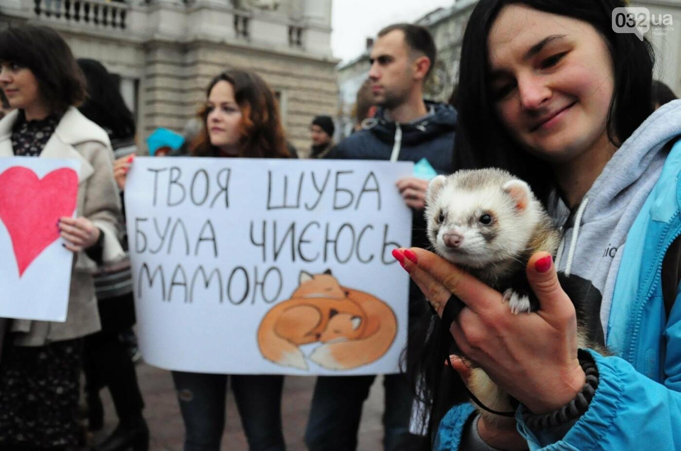 Львів'яни взяли участь у масштабному Марші на захист тварин. Фоторепортаж, фото-2