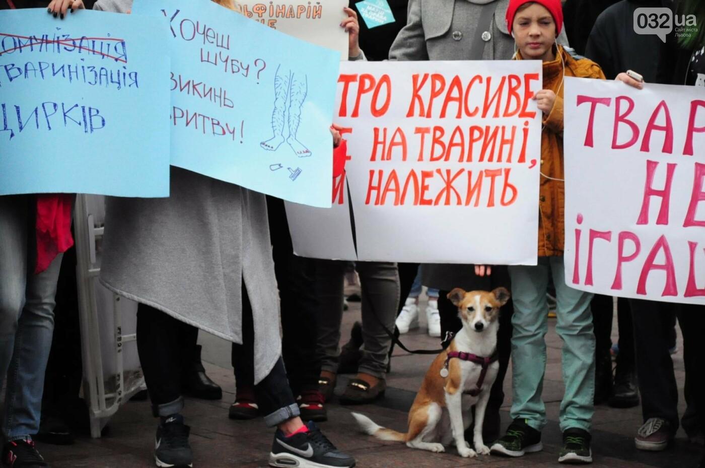 Львів'яни взяли участь у масштабному Марші на захист тварин. Фоторепортаж, фото-3