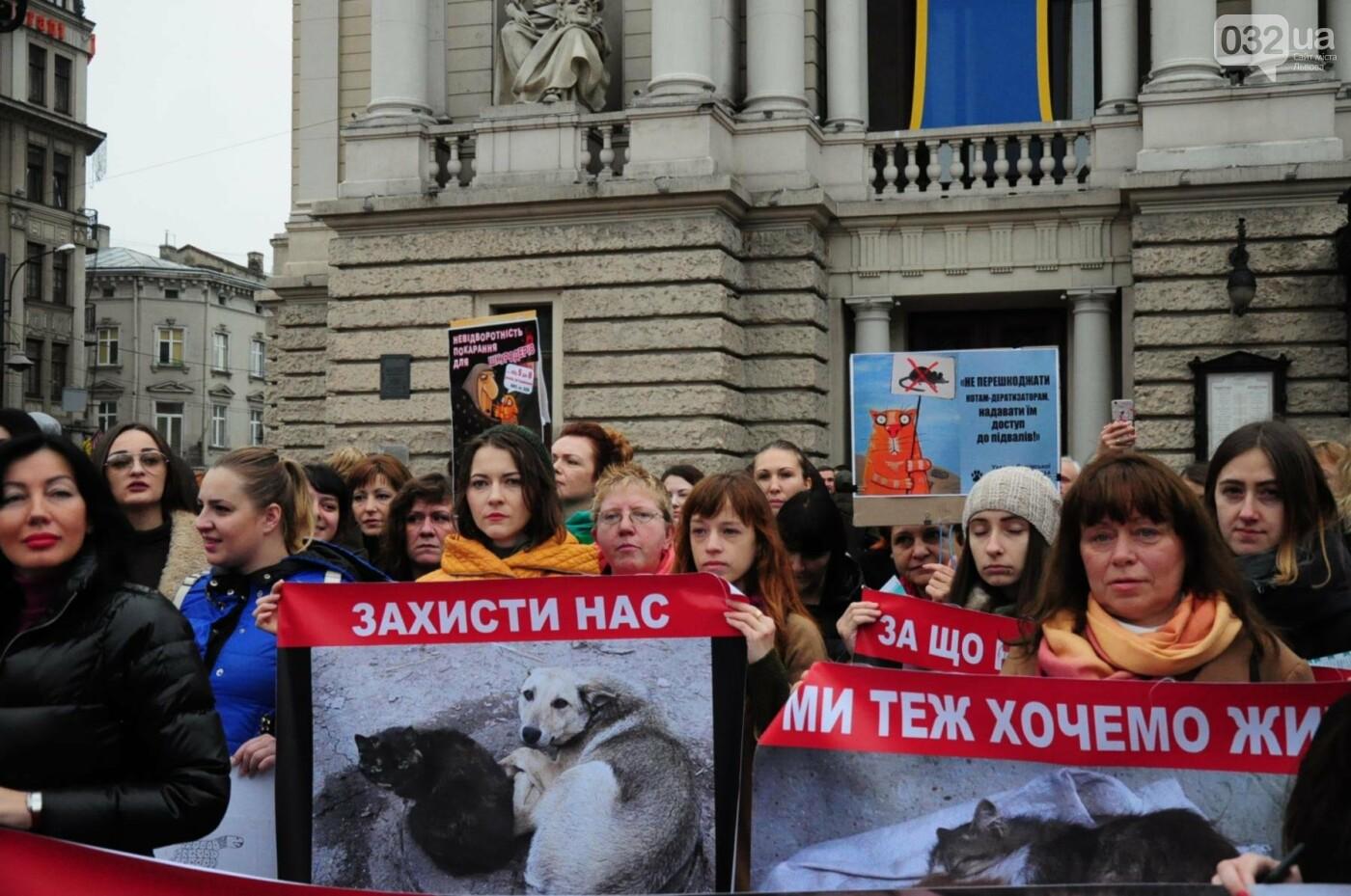 Львів'яни взяли участь у масштабному Марші на захист тварин. Фоторепортаж, фото-13