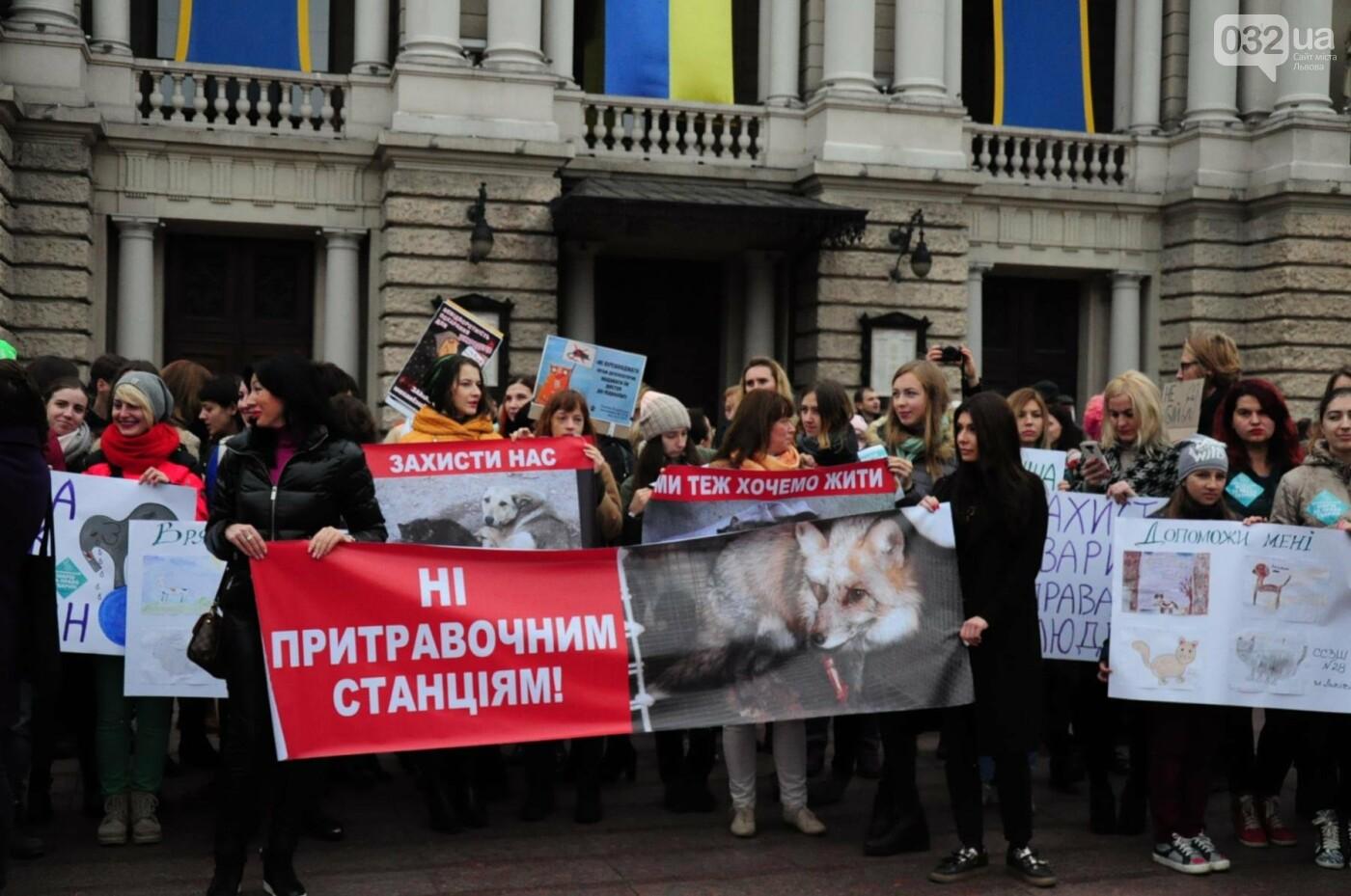Львів'яни взяли участь у масштабному Марші на захист тварин. Фоторепортаж, фото-5