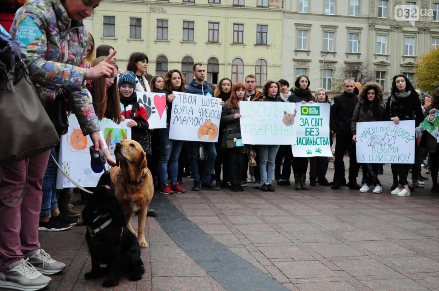 Львів'яни взяли участь у масштабному Марші на захист тварин. Фоторепортаж, фото-14