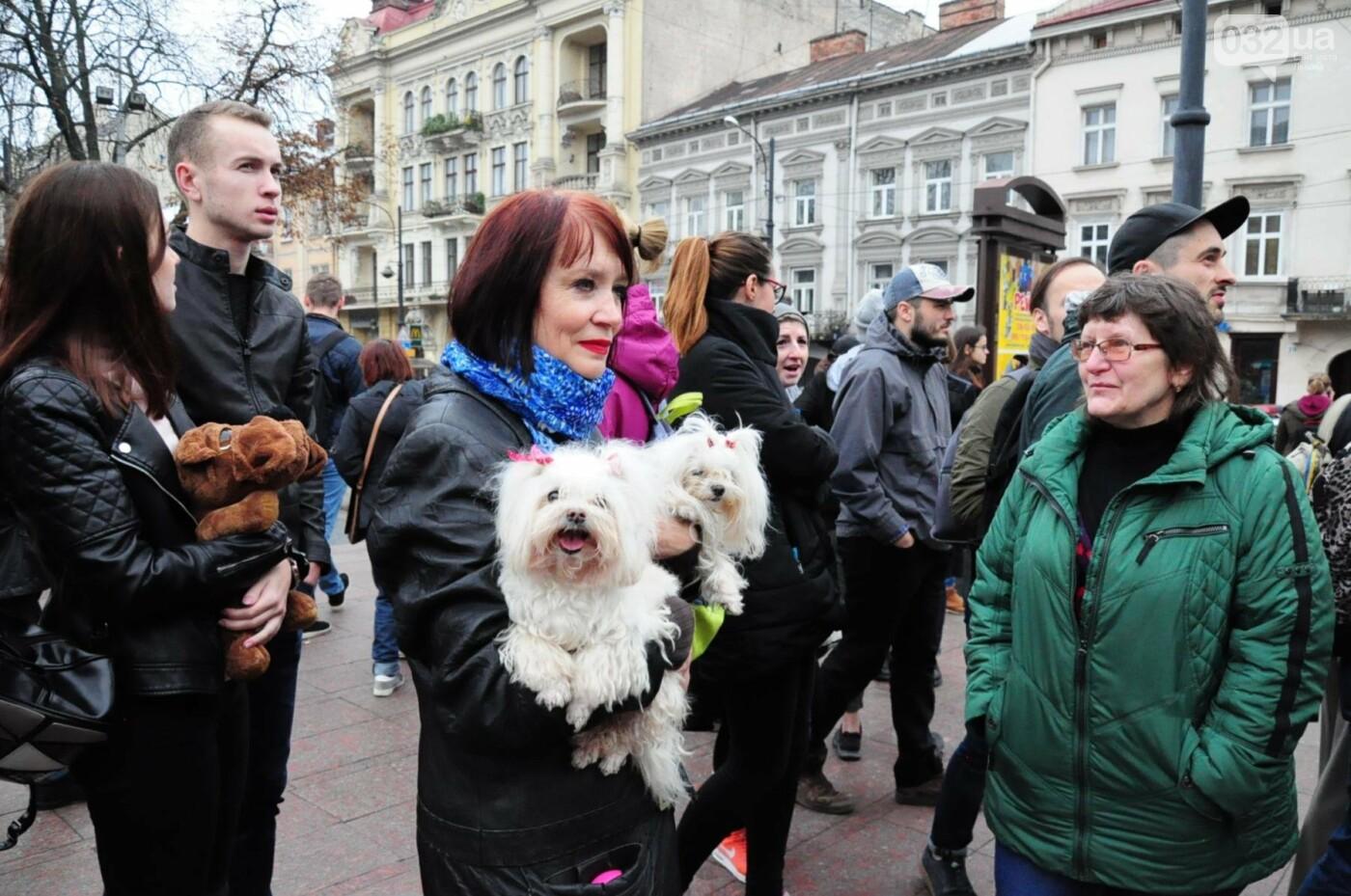 Львів'яни взяли участь у масштабному Марші на захист тварин. Фоторепортаж, фото-15