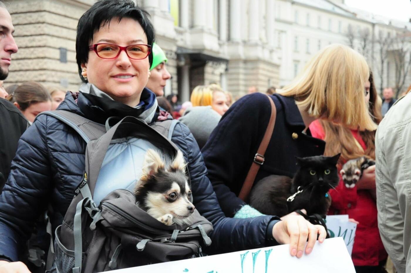 Львів'яни взяли участь у масштабному Марші на захист тварин. Фоторепортаж, фото-18