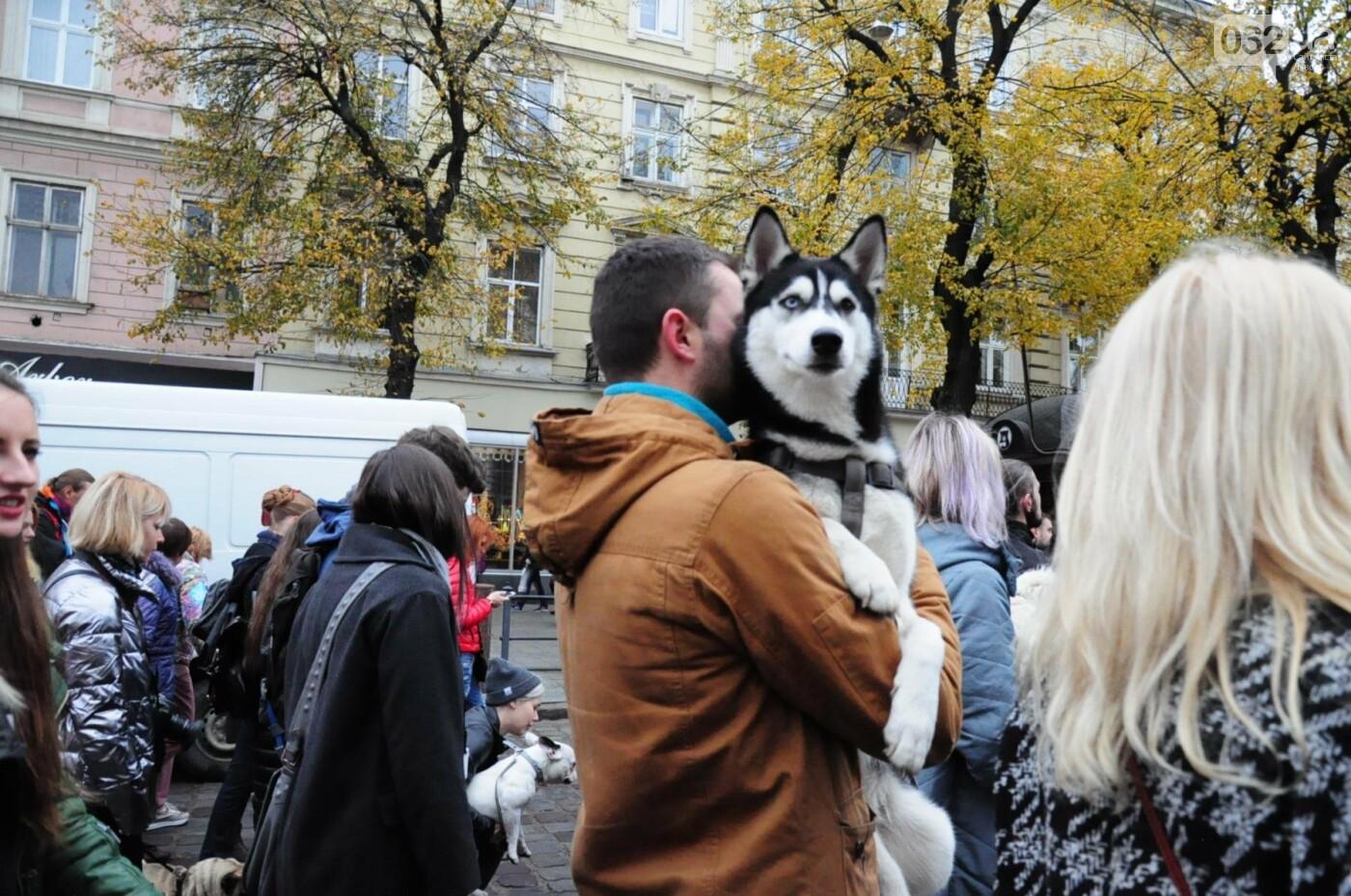 Львів'яни взяли участь у масштабному Марші на захист тварин. Фоторепортаж, фото-36