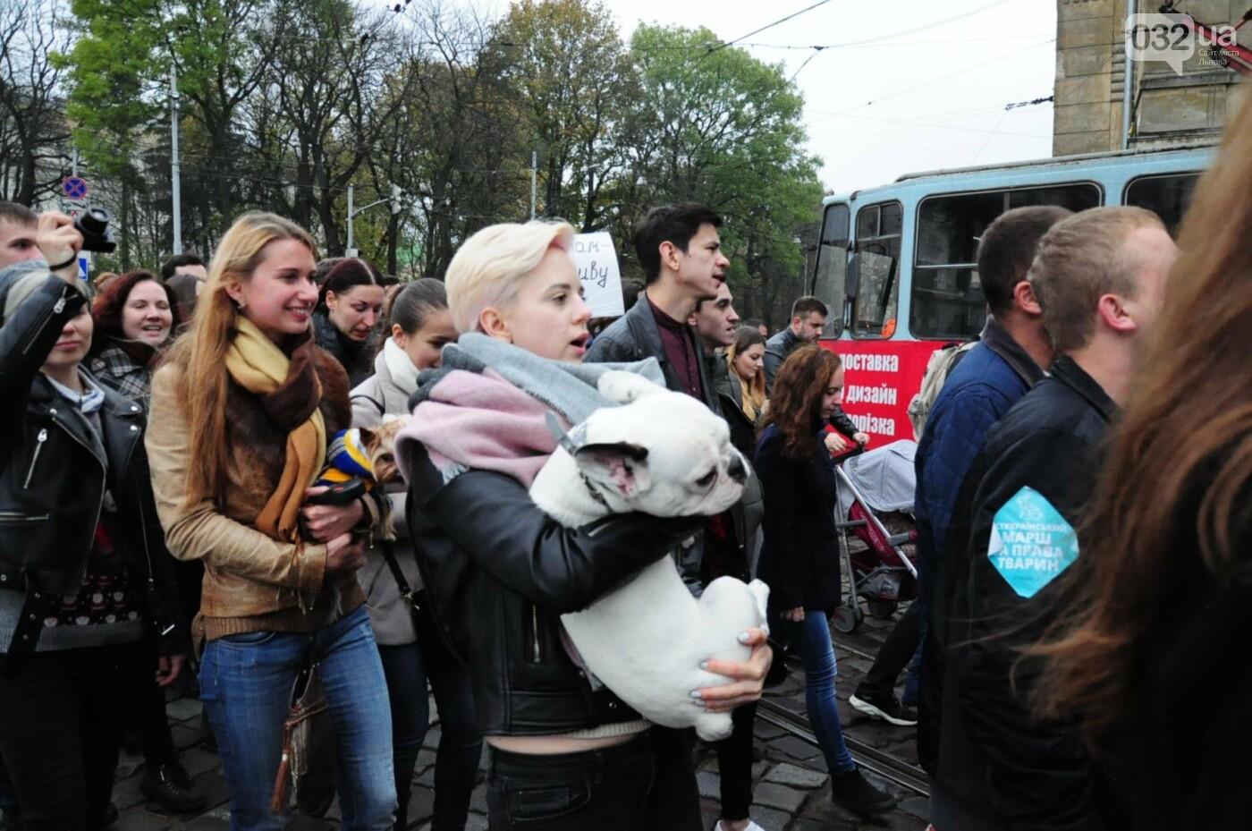 Львів'яни взяли участь у масштабному Марші на захист тварин. Фоторепортаж, фото-35