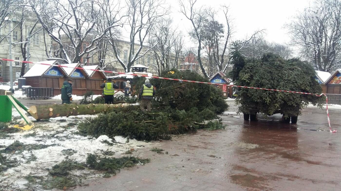 У Львові демонтували головну новорічну ялинку (ФОТО), фото-4