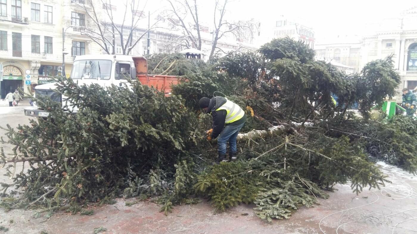 У Львові демонтували головну новорічну ялинку (ФОТО), фото-1