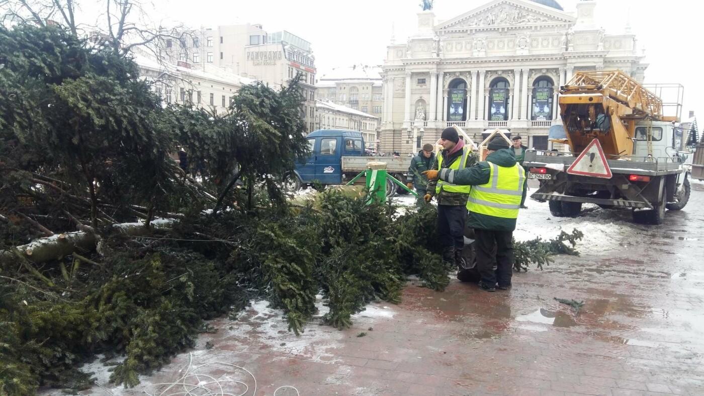 У Львові демонтували головну новорічну ялинку (ФОТО), фото-2