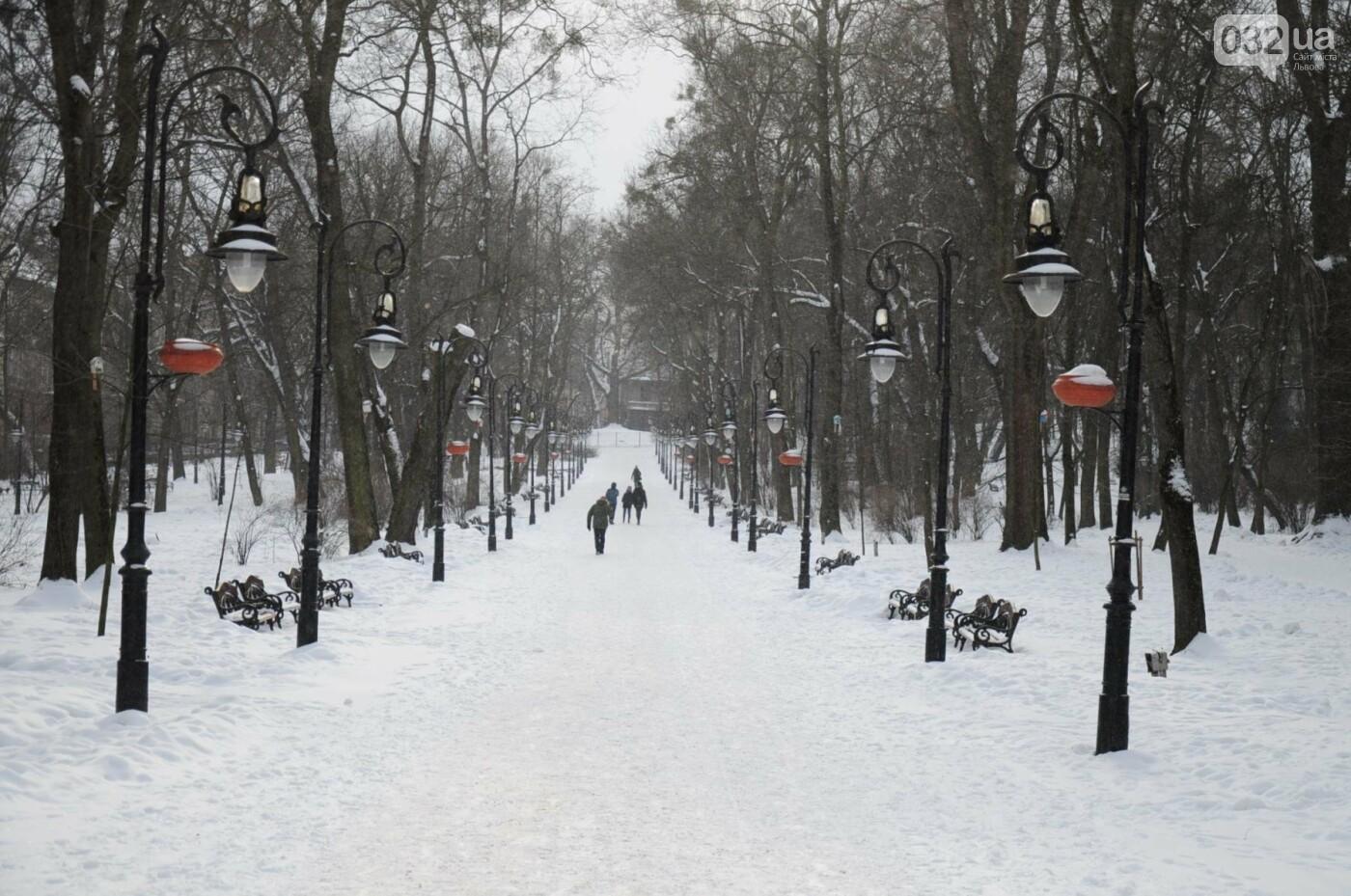 Як виглядає Львів у останній день зими. ФОТО, фото-5