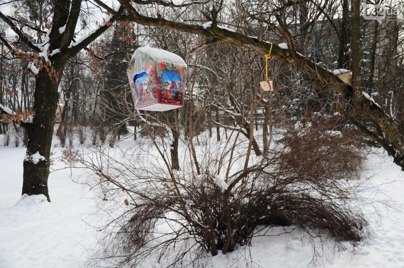 Як виглядає Львів у останній день зими. ФОТО, фото-2