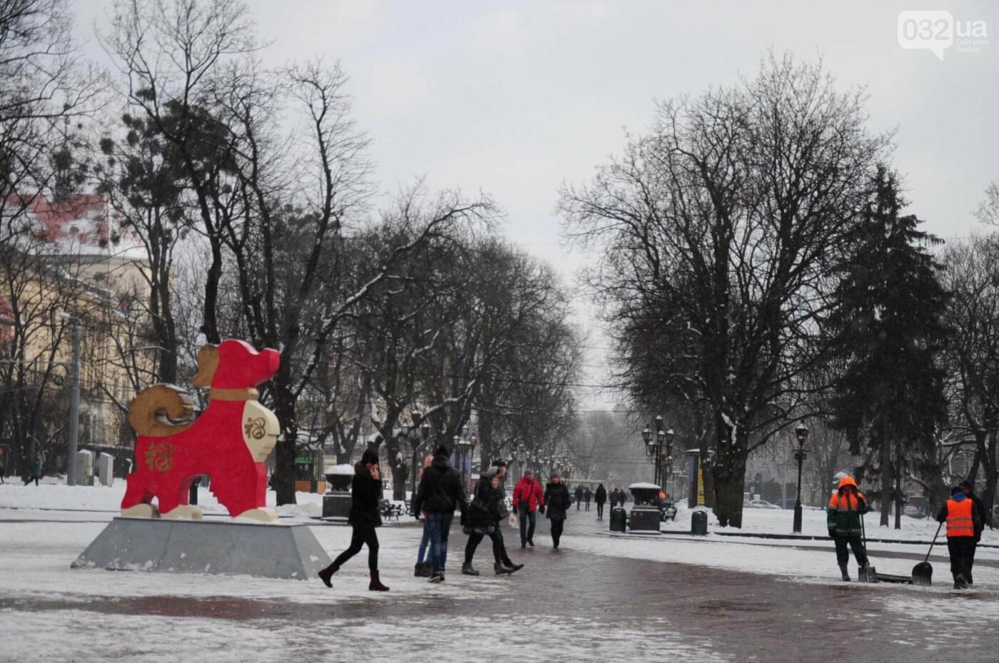Як виглядає Львів у останній день зими. ФОТО, фото-1