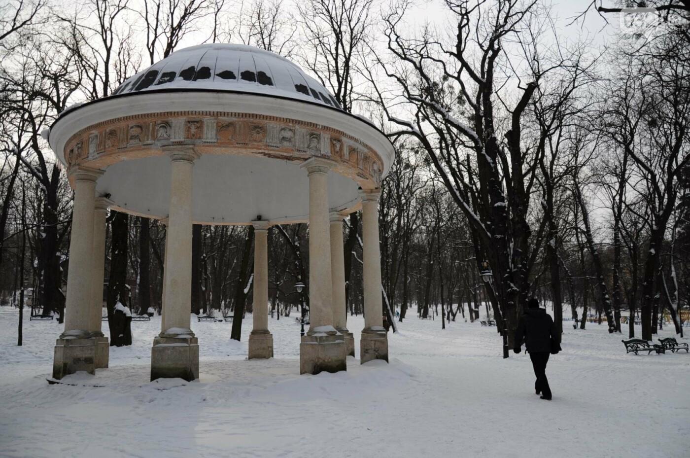 Як виглядає Львів у останній день зими. ФОТО, фото-19