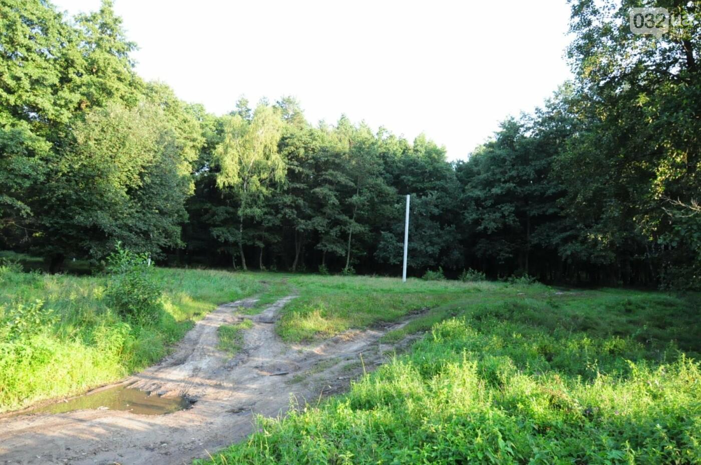 На Білогорщі за 6,5 мільйонів оновлять лісопарк, - ФОТО, фото-3
