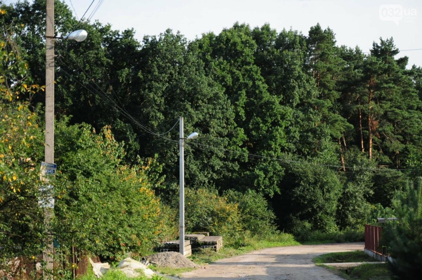 На Білогорщі за 6,5 мільйонів оновлять лісопарк, - ФОТО, фото-13