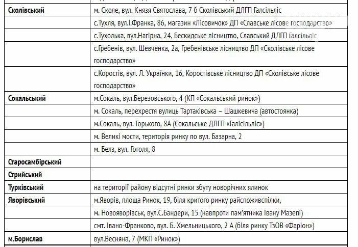 Де на Львівщині купити ялинку, - АДРЕСИ, фото-3