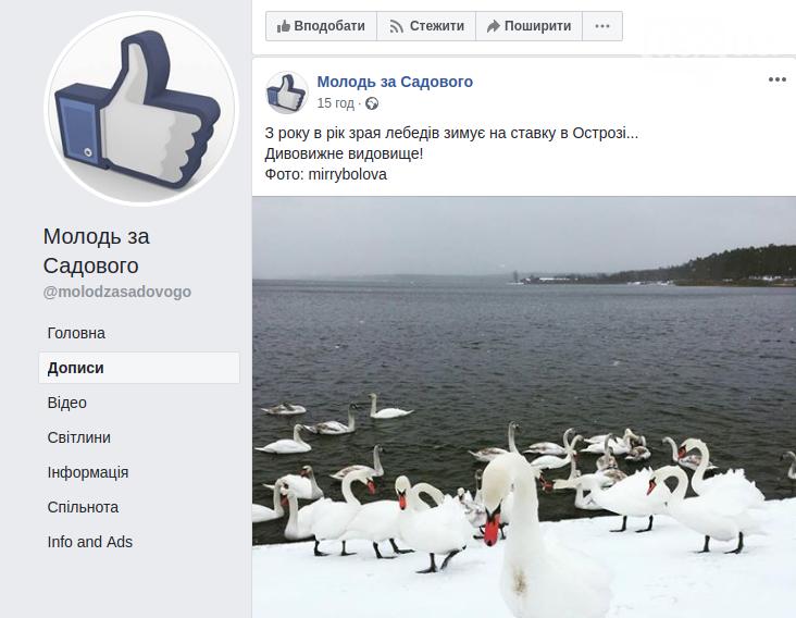 Садовий заполонив соцмережі: як піарять мера Львова у Фейсбуці, фото-7