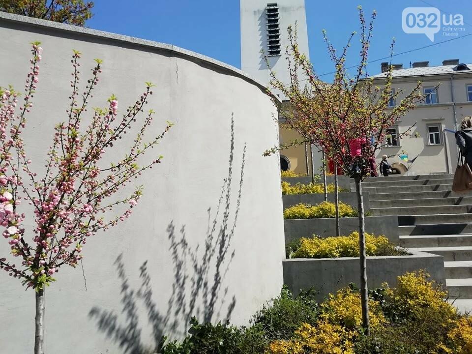 Де у Львові квітнуть сакури, - ІНТЕРАКТИВНА МАПА, ФОТО, фото-8