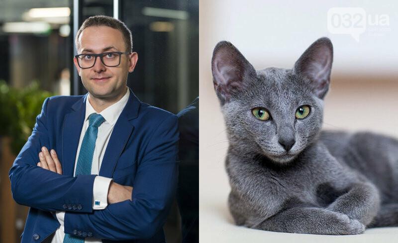 На яких котиків схожий Андрій Садовий та інші львівські чиновники й політики, - ФОТО, фото-1