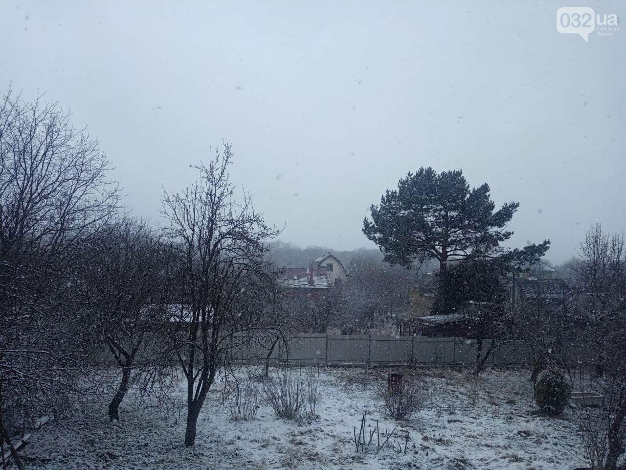 Львів та області засипало снігом, Фото: 032.ua