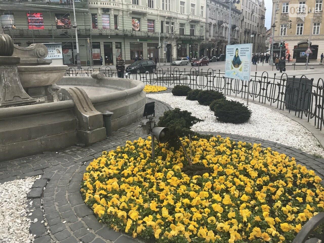 Клумба біля фігури Матері Божої, Фото: 032.ua