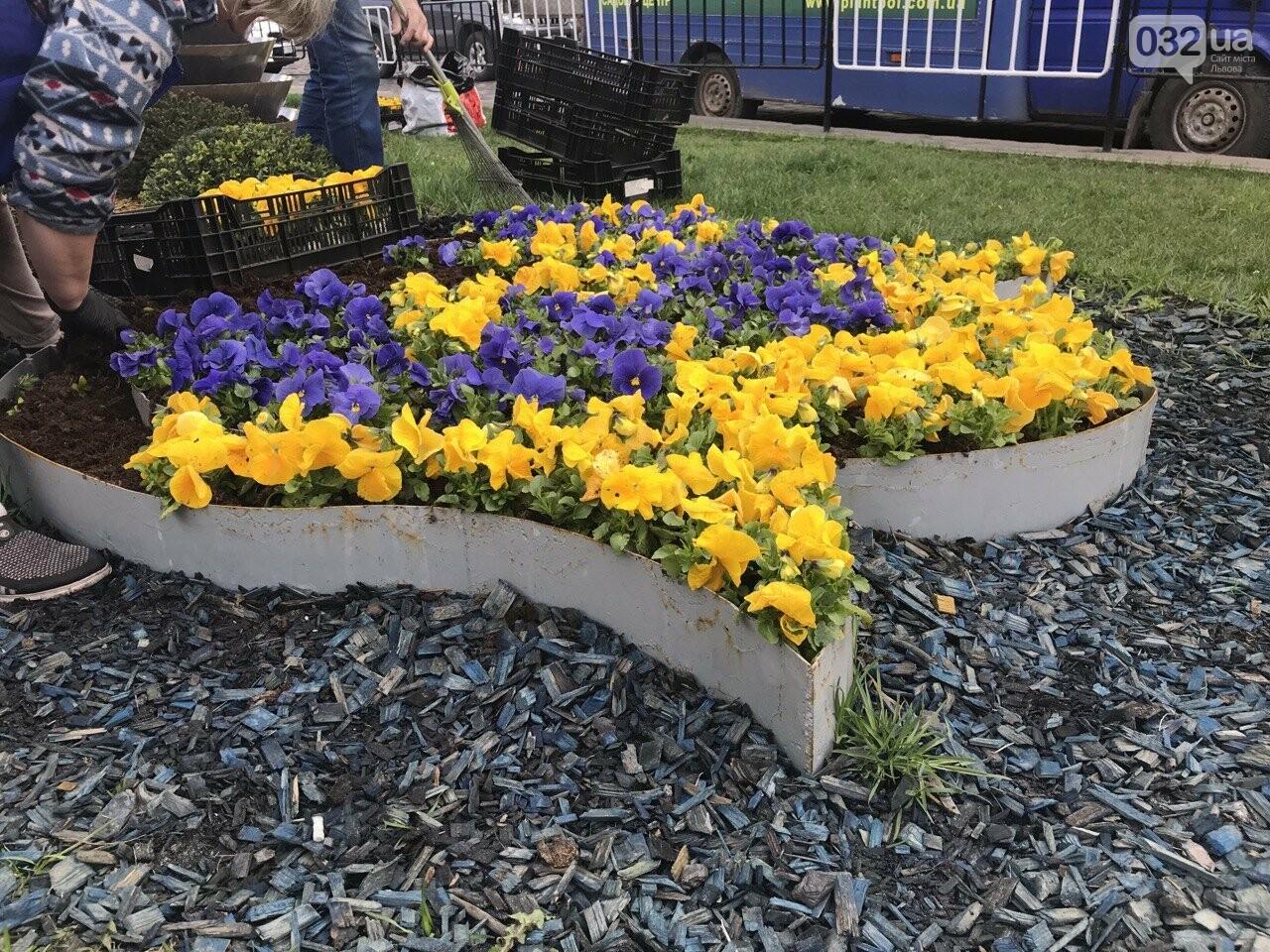 Клумби біля квітвокого годинника, Фото: 032.ua
